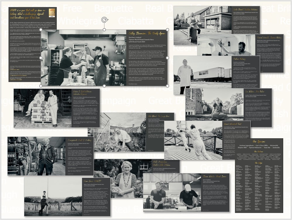 Exhibition Page 2